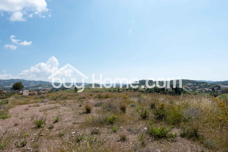 Large Plot Monagrouli | BuyHome