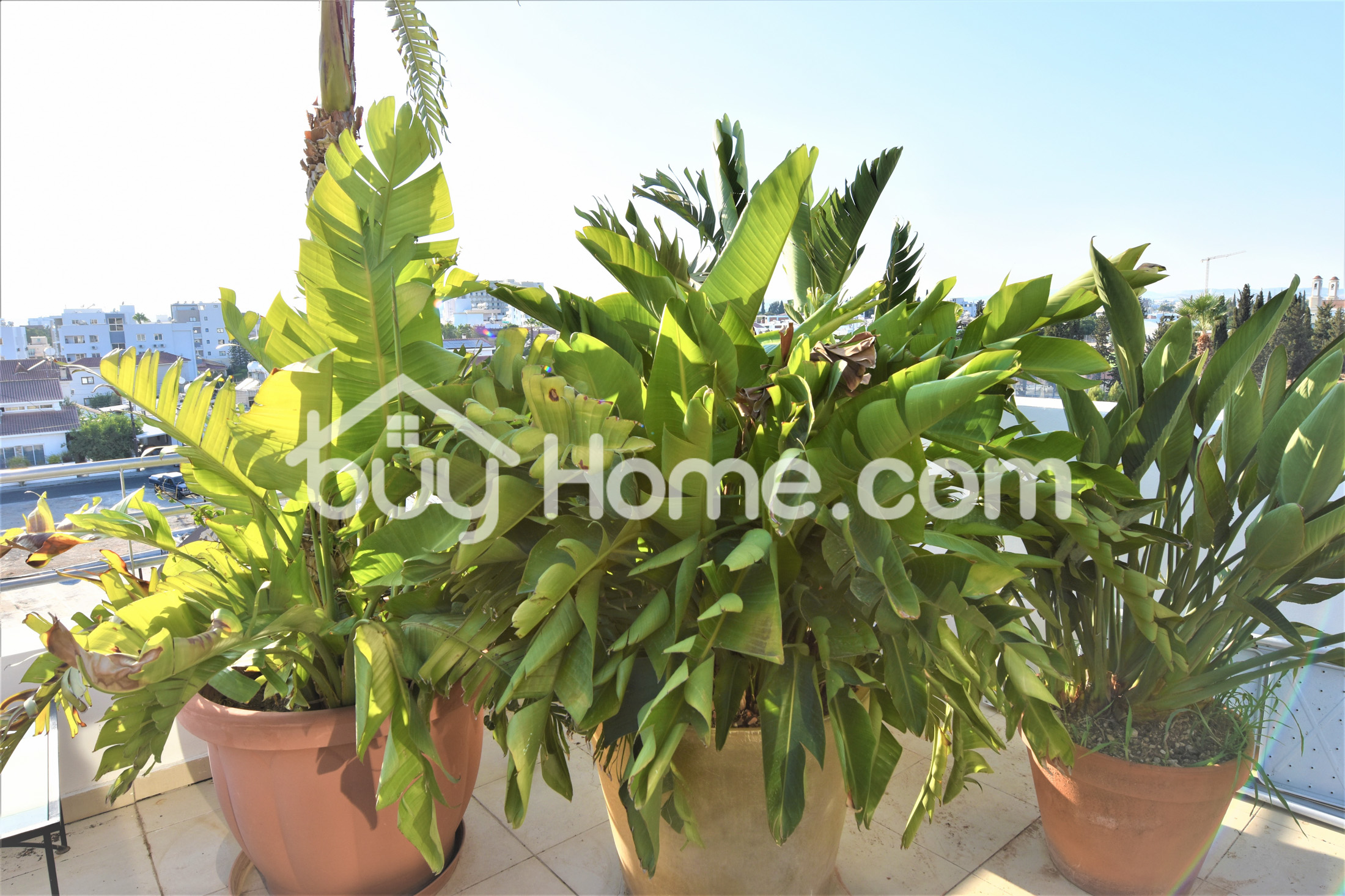 3 Bed Penthouse Entire Floor Apt | BuyHome